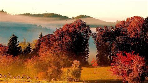 windows  nature paysage fond decran apercu