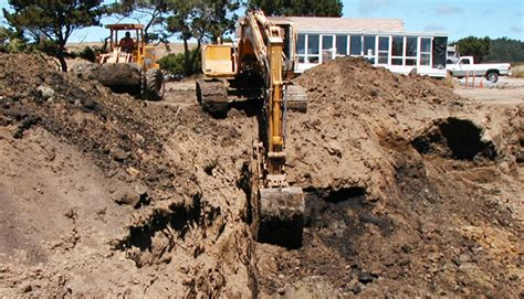 soil contaminants    removed  soil