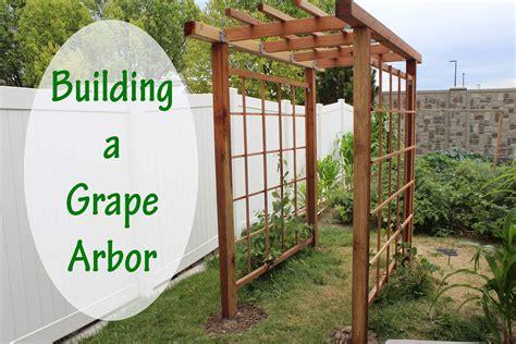 build a grape arbor building a grape arbor stoney acres