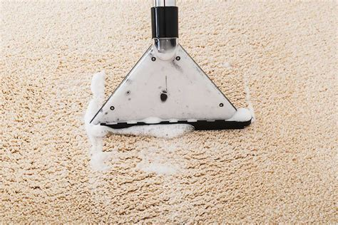 Best Carpet Cleaning Solution  Best Carpet Extractor