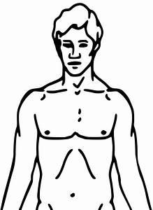 File Pioneer Plaque Man Upper Body As Diagram Template Svg