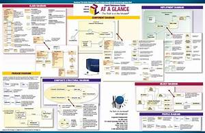 A Quick Guide To Uml Diagrams English Edition