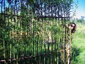 Sichtschutz Aus Weide : lebender sichtschutz aus weiden sichtschutz pergola ~ Lizthompson.info Haus und Dekorationen