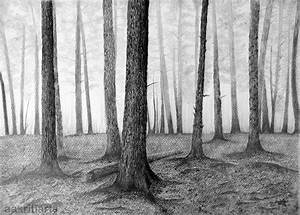 Trees Pencil Drawing by aakritiarts on DeviantArt