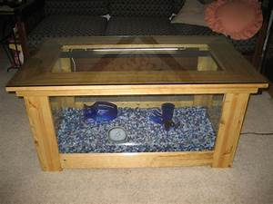 Aquarium Coffee Table: 7 Steps (with Pictures)
