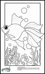 Goldfish Coloring Fish Colors Template Teamcolors sketch template