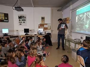 Centre Activa Pau : educaci viva i activa ~ Melissatoandfro.com Idées de Décoration