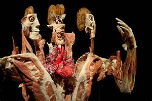 Body Worlds Returns to Toronto, This Time with More Heart