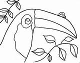 Inchworm Coloring Inch Leo Pages Printable Getcolorings sketch template