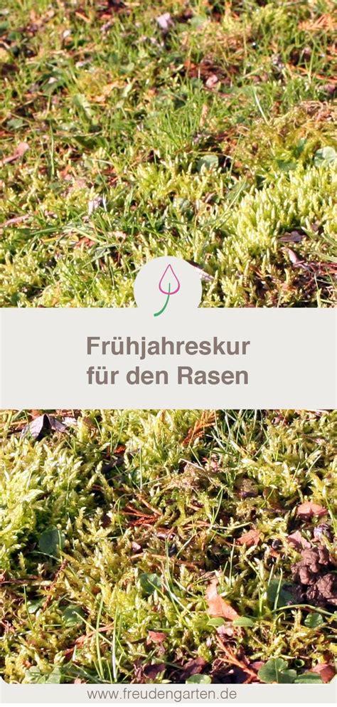 Garten Pflanzen Frühjahr by 282 Besten Garten Balkon Pflanzen Bilder Auf