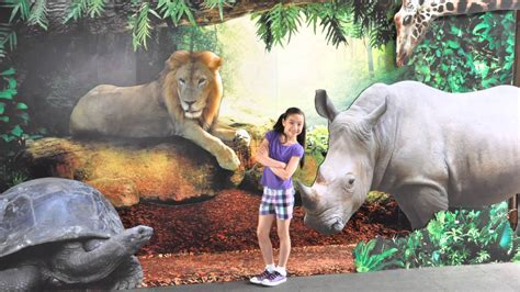 discovery channel animals wallpapers wallpaper cave