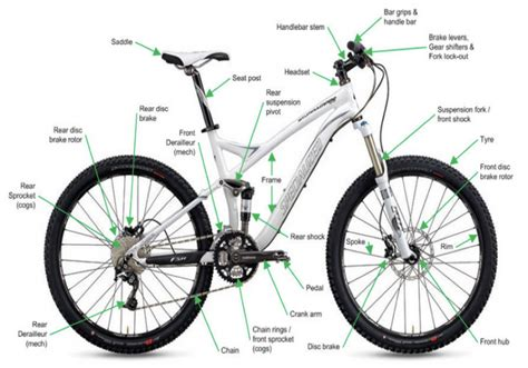 How To Buy Your First Mountain Bike