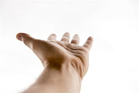 phantom limbs  brains  amputees remember missing hands decades