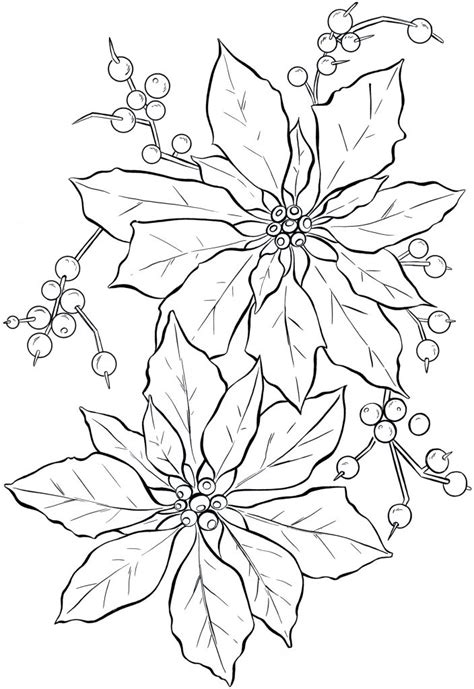 Coloring Pages For by Free Printable Poinsettia Coloring Pages For