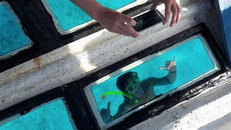 Glass Bottom Boat Que Significa by View Glass Bottom Boat Tours Providencia Lo Que