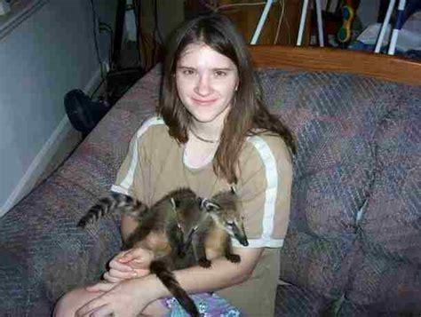 coatimundi pet kingsnake comphoto gallery gt wildlife exotic animals gt coatimundi babies