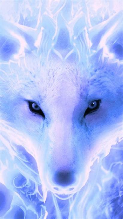 Wolf Cool Backgrounds Android Wallpapers Resolution Phone