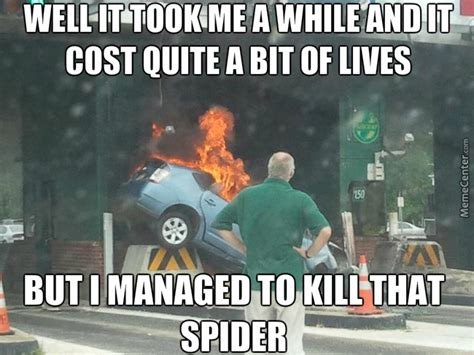 Kill Spider Meme - now honey we all know the only way to kill a spider is fire so i have to crash this car by