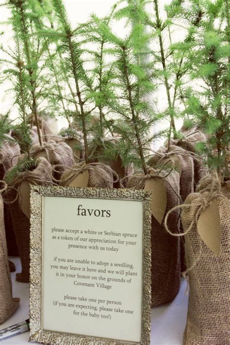Tree Seedlings In Burlap Bags As Wedding Favors Whole