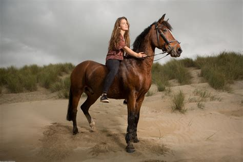 equine photography  ellie tripp  perranporth beach