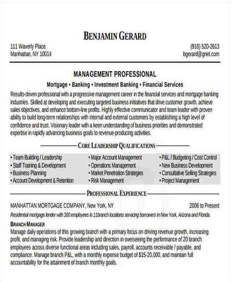 banking resume templates    premium templates