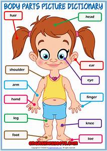 Body Parts Esl Printable Picture Dictionary For Kids