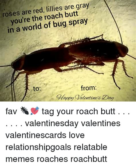 Roach Meme - roses are red lillies are gray you re the roach butt in a world of bug spray to calapp
