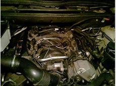 Cold weather Crankcase vent valve issues Xoutpostcom