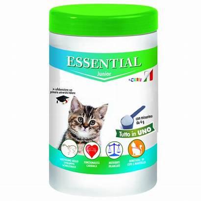 Essential Junior Gatto Gatti Complementari Alimenti