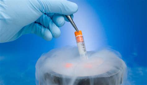mcw department  obstetrics gynecology fertility