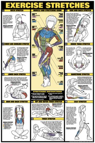For starters, you can set a timer to remind you to take a quick walk or stretch. Exercise Stretches Poster - Laminated