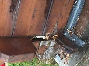 Lame Bois Pour Construction Chalet : probl me avec abri de jardin ~ Melissatoandfro.com Idées de Décoration