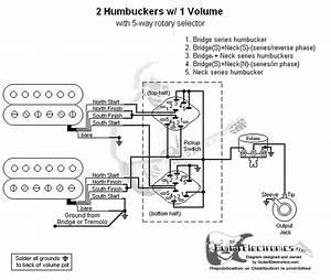 2 Humbuckers  5 1 Volume  03