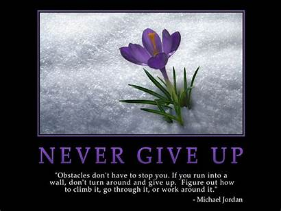 Never Give Unknown Author Ammata