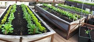Raised Bed Gardens On Rooftops