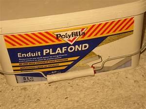 Enduire Un Plafond Au Rouleau : d coplus enduire au rouleau comment bien enduire au rouleau ~ Farleysfitness.com Idées de Décoration