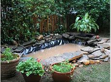 Outdoor Pond Installation HGTV