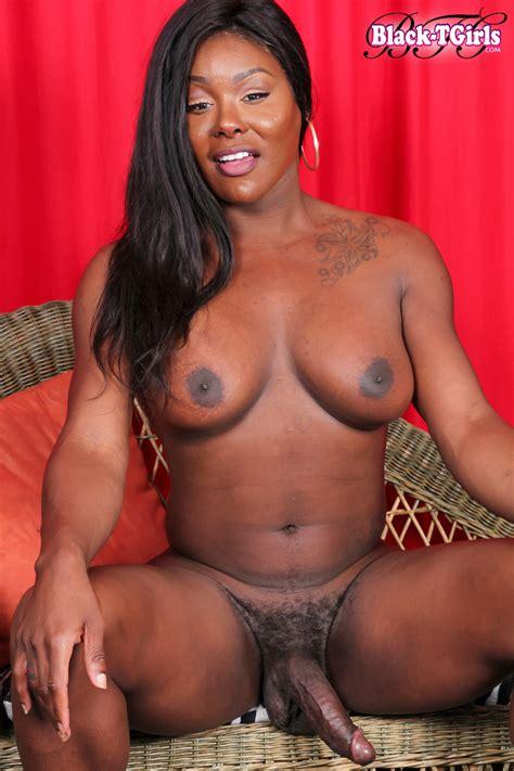 Black Tgirls Bootylicious Sex Kitten