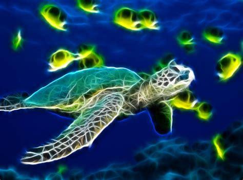 Animated Sea Wallpaper - sea turtle animated wallpaper desktopanimated
