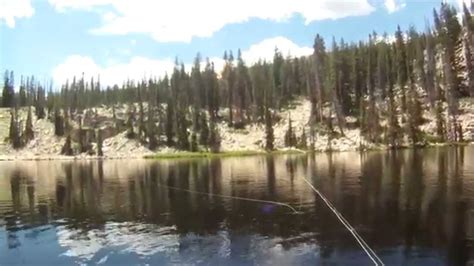 Scow Lake Uintas by Fly Fishing On Echo And Joan Lake High Uintas