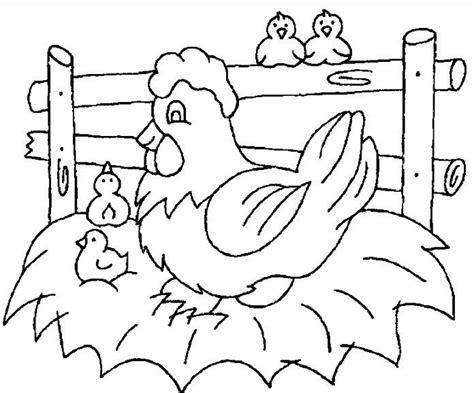 gambar mewarnai ayam mewarnai gambar ayam jantan dan