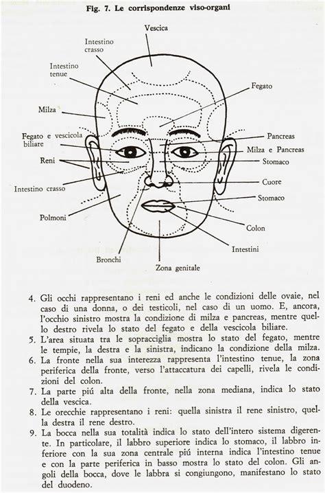 Labbra Interne Sporgenti S Naturata Guardarsi In Faccia