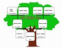 my blog .. then do it better: my family tree