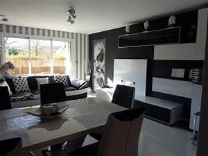 Salon Gris Et Rose : peinture gris blanc salon avec peinture grise salon le ~ Melissatoandfro.com Idées de Décoration