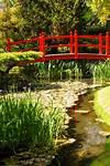 Red Bridge. Irish National Stud's Japanese Gardens japanese gardens kildare ireland