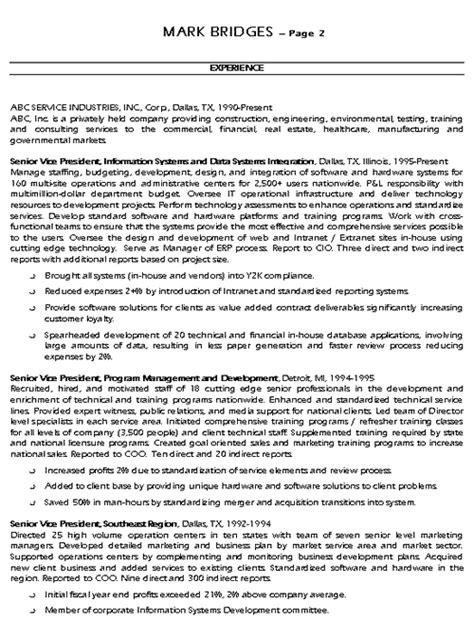 cio technology executive resume  sample
