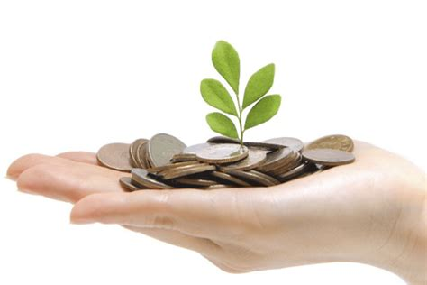 putting personal money   business   steps