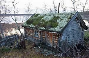 Life In The Taiga : biotope pasvik one autumn day in the taiga ~ Frokenaadalensverden.com Haus und Dekorationen