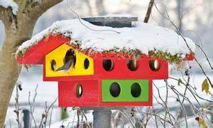 Vogelfutterhaus Selber Machen : vogelhaus selber bauen ~ Orissabook.com Haus und Dekorationen