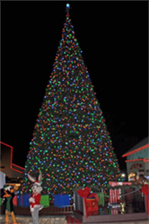 six flags discovery kingdom chooses led tree and energy efficient led